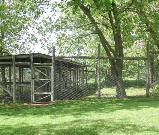 Exterior Dog Pen of Arden Country Kennels