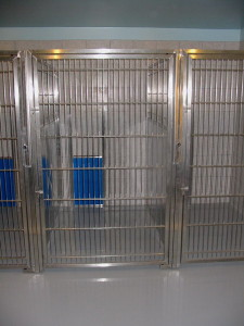 Dog Boarding - Inside Arden Kennel